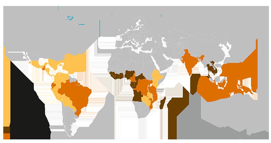 Weltweite Anbaugebiete der Kaffeepflanzen